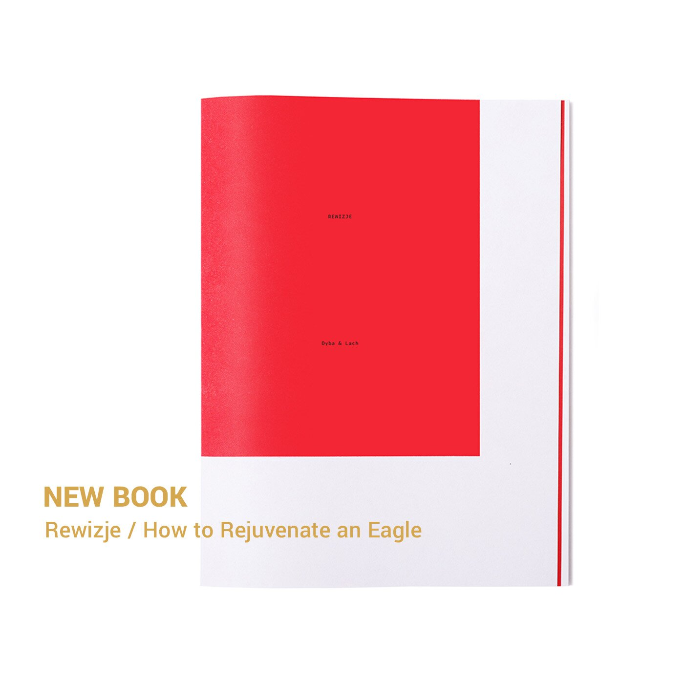 New book - How to Rejuvenate an Eagle